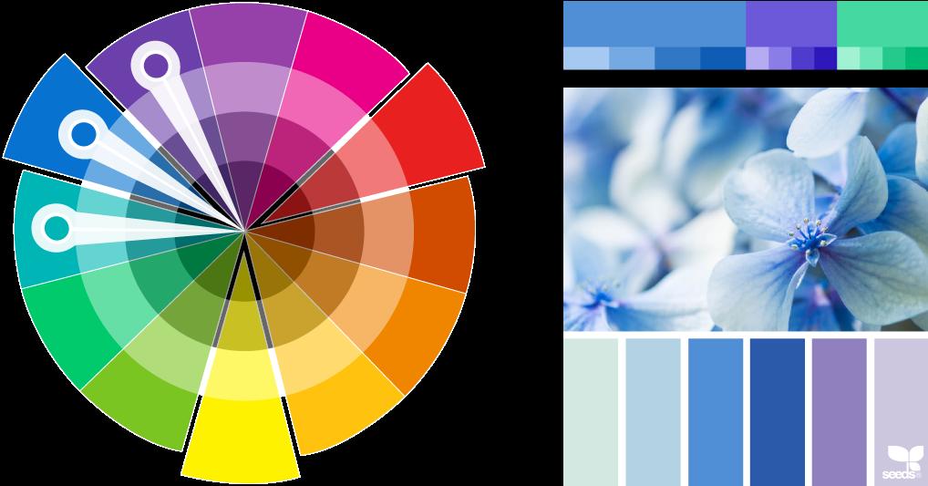 Analogous colour palettes